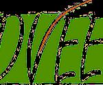 logo_dvee